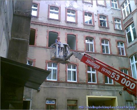 elektriker zehlendorf berlin charlottenburg elektriker stirbt bei sturz von elektro berlin. Black Bedroom Furniture Sets. Home Design Ideas